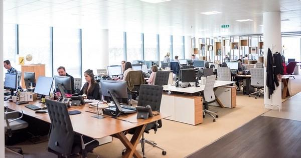 10 reguli de la Inspectia Muncii pentru angajatori si salariati la locul de munca